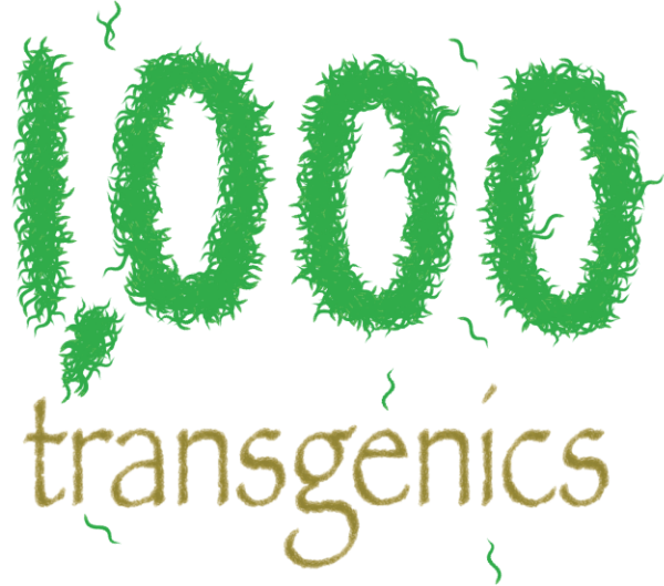 1000 transgenic C elegans now served