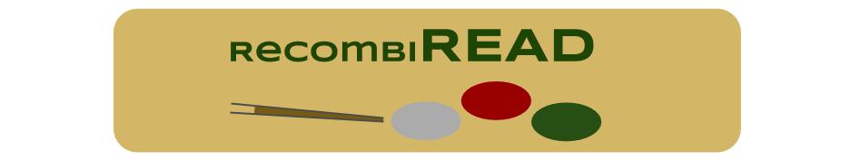redimodel icon