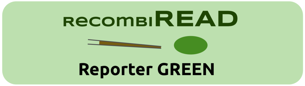 RR100002 - Reporter GREEN - 10 ul - 200 ng/ul - (in development)