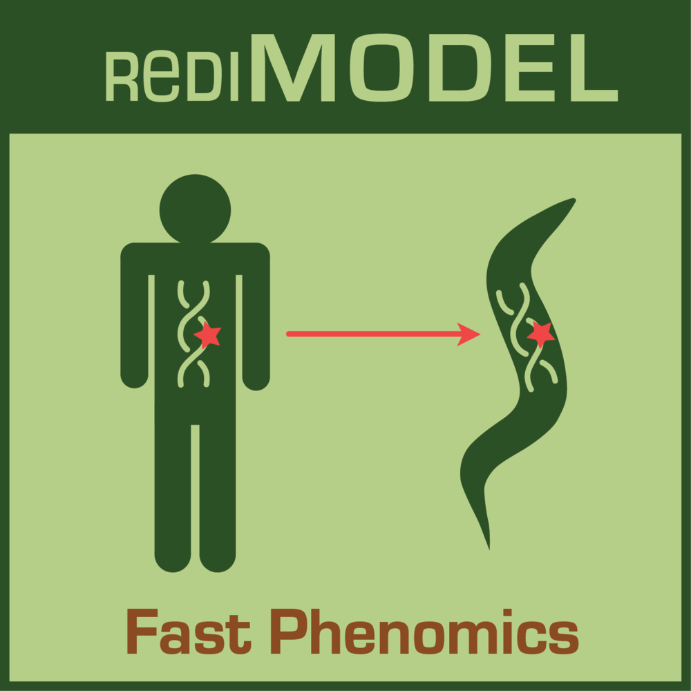 RediMODEL icon3 sml.png