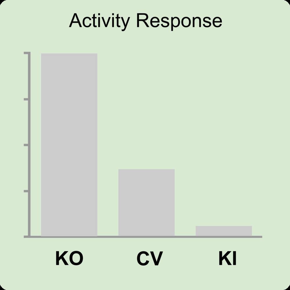 phenotype activity - KOCVKI inv.png