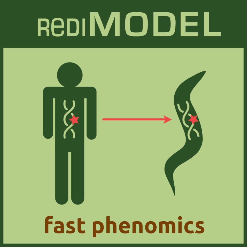 RediMODEL fast phenomics Icon.png
