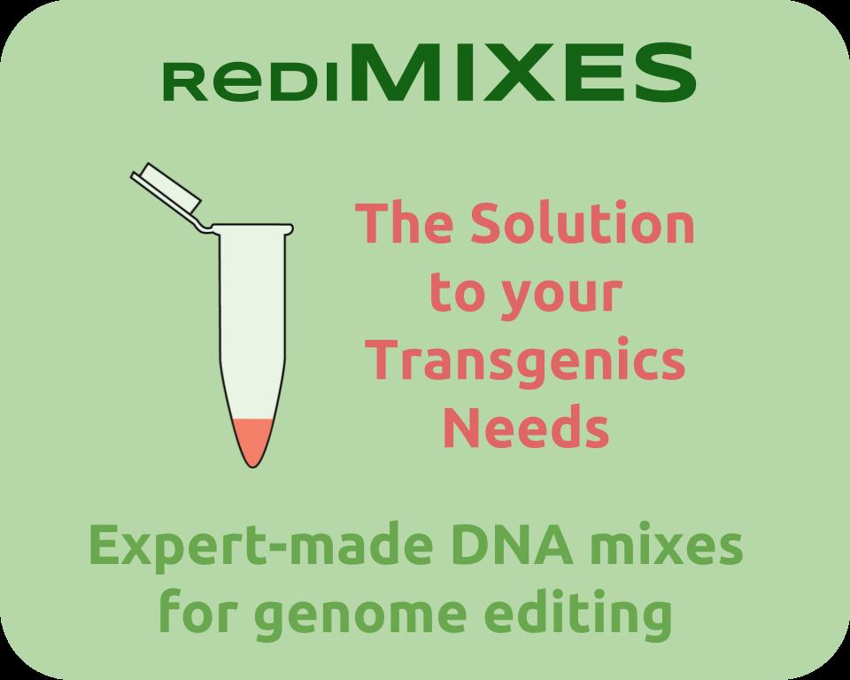 RediMIX logo (2).png