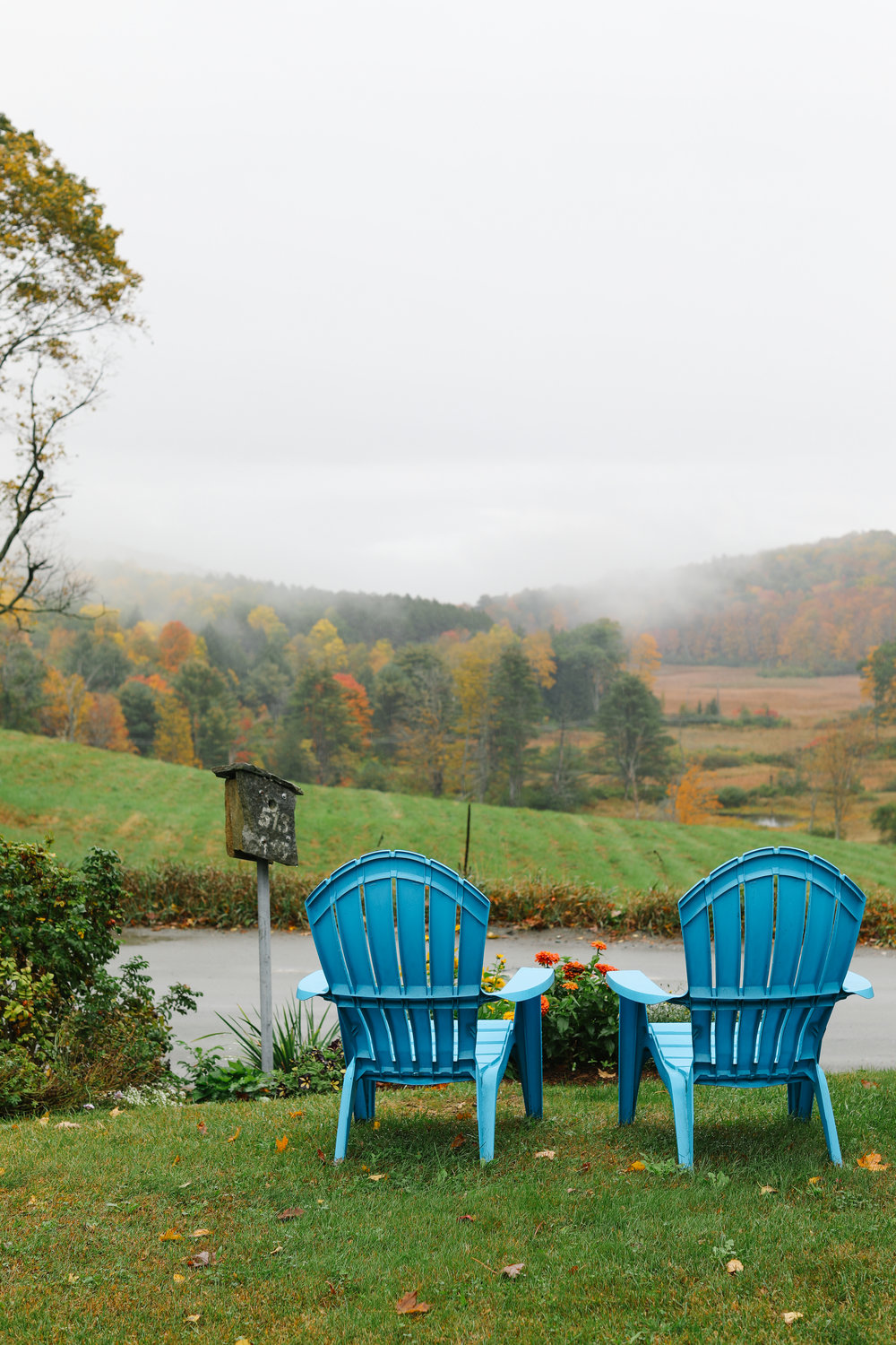 Pull up an adirondack and enjoy the view!
