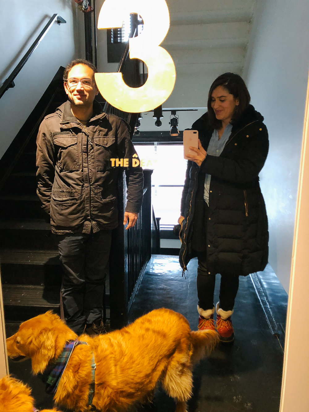Pro tip: The elevator might freak your dog out so we recommend taking the stairs to and from your room.
