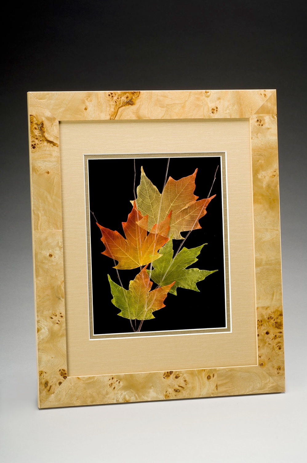 Shadowbox 11x14 Sugar Maple