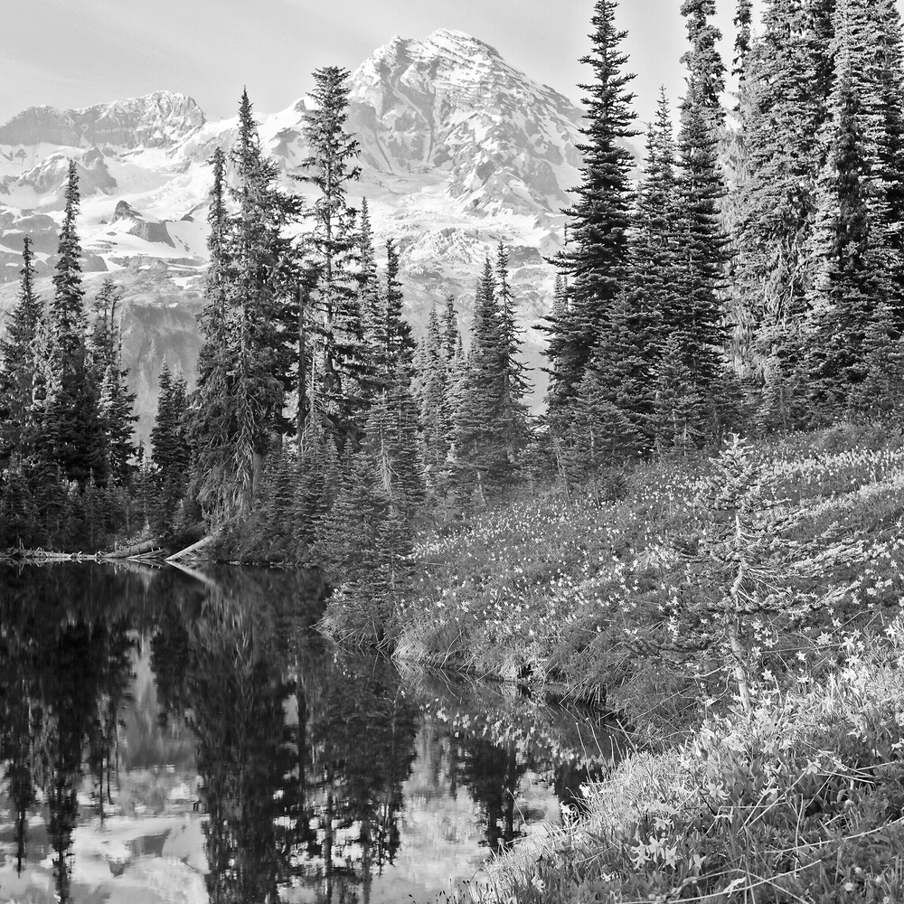 Mirror Lake, Mt. Rainier National Park, Washington © 2015.  Image: Rolleiflex 2.8 F + Zeiss Planar 1:2.8/80mm.