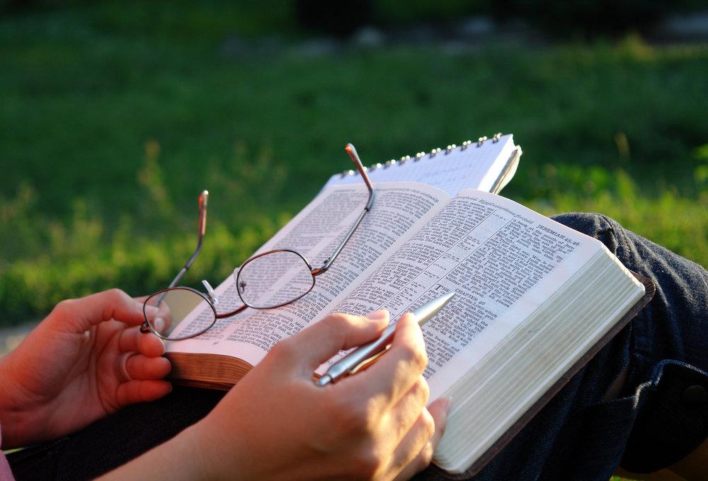 Bible Reading -