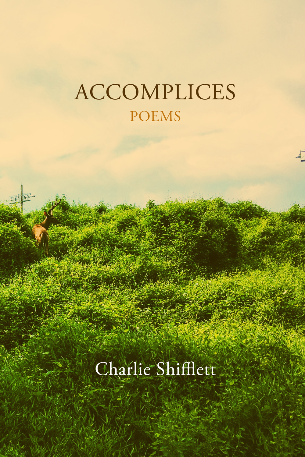 Accomplices book cover