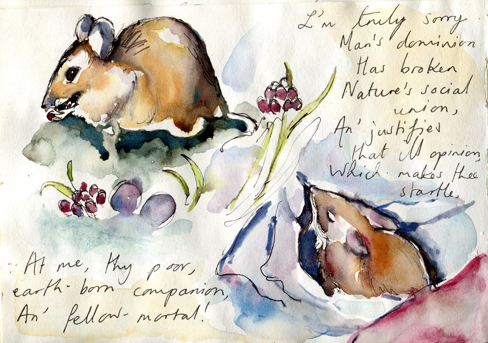 Catherine Beaumont, To a Mouse, illustration, 2.jpg
