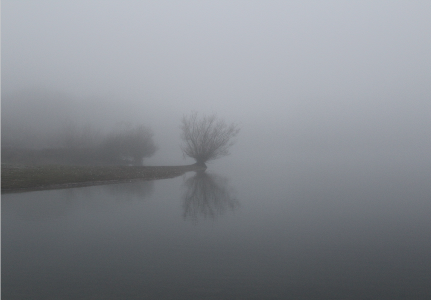 Misty Waters.PNG