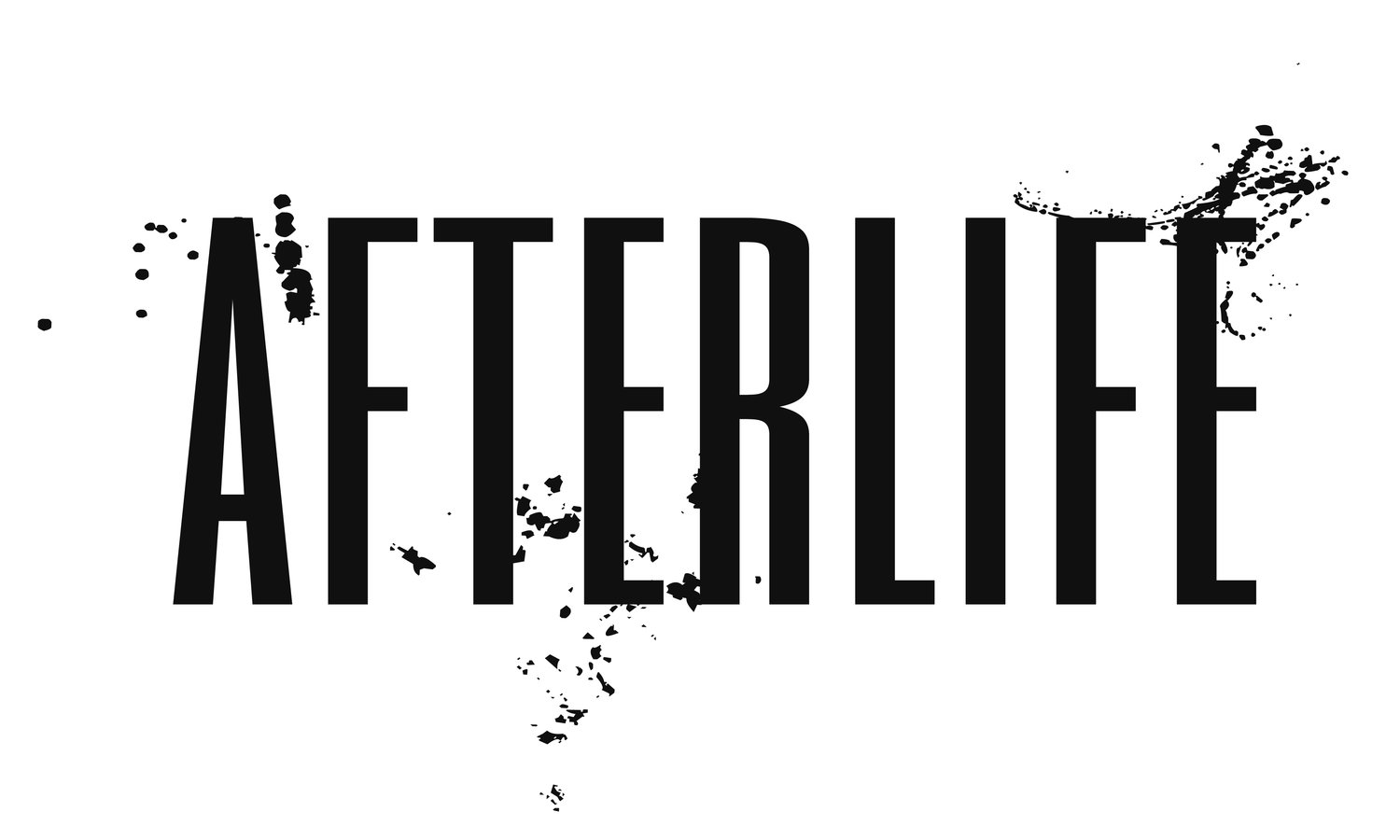 Afterlife the Novel