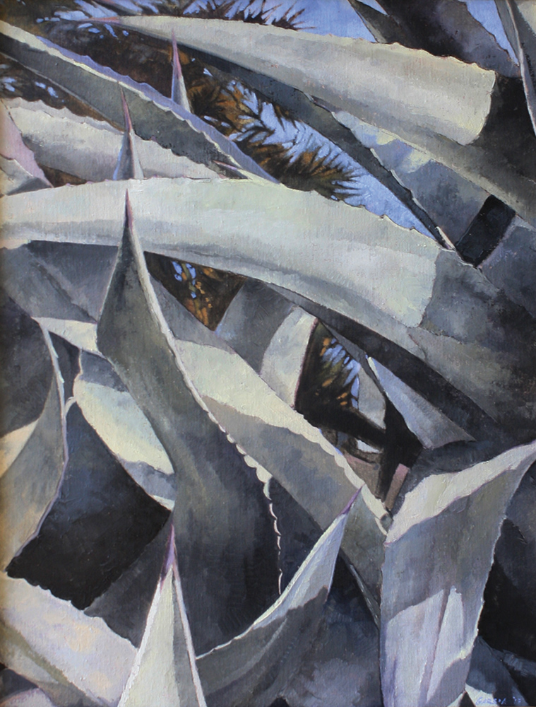 Through the Agave Thicket 24 x18, oil on linen, sold.