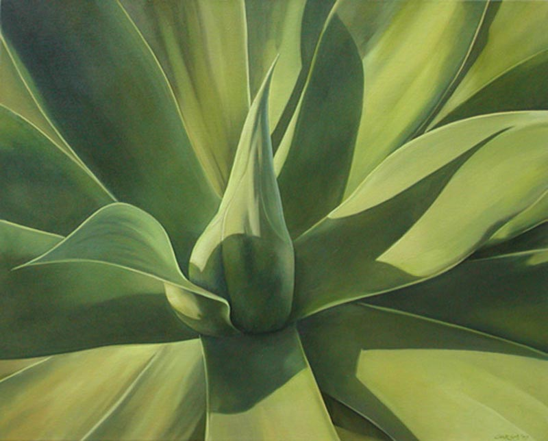 Agave Dreamscape #11, 20x30, oil on canvas, sold.