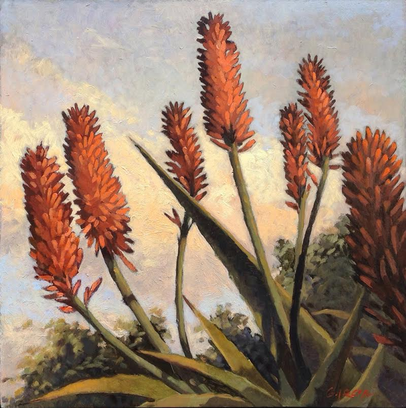 Jennifer's Aloes, 8 x 8, oil on board. Contact  Waterhouse Gallery   SOLD