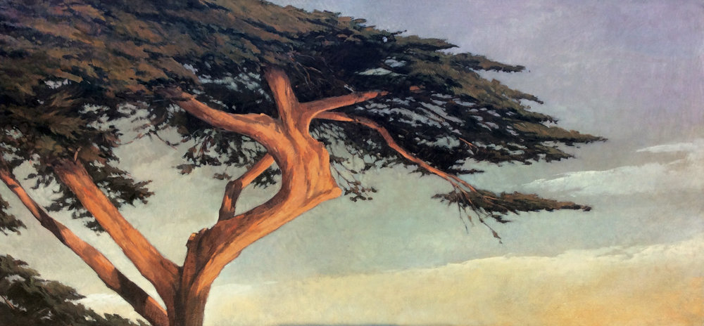 Montecito Cypress, 14x30, oil on linen.  SOLD