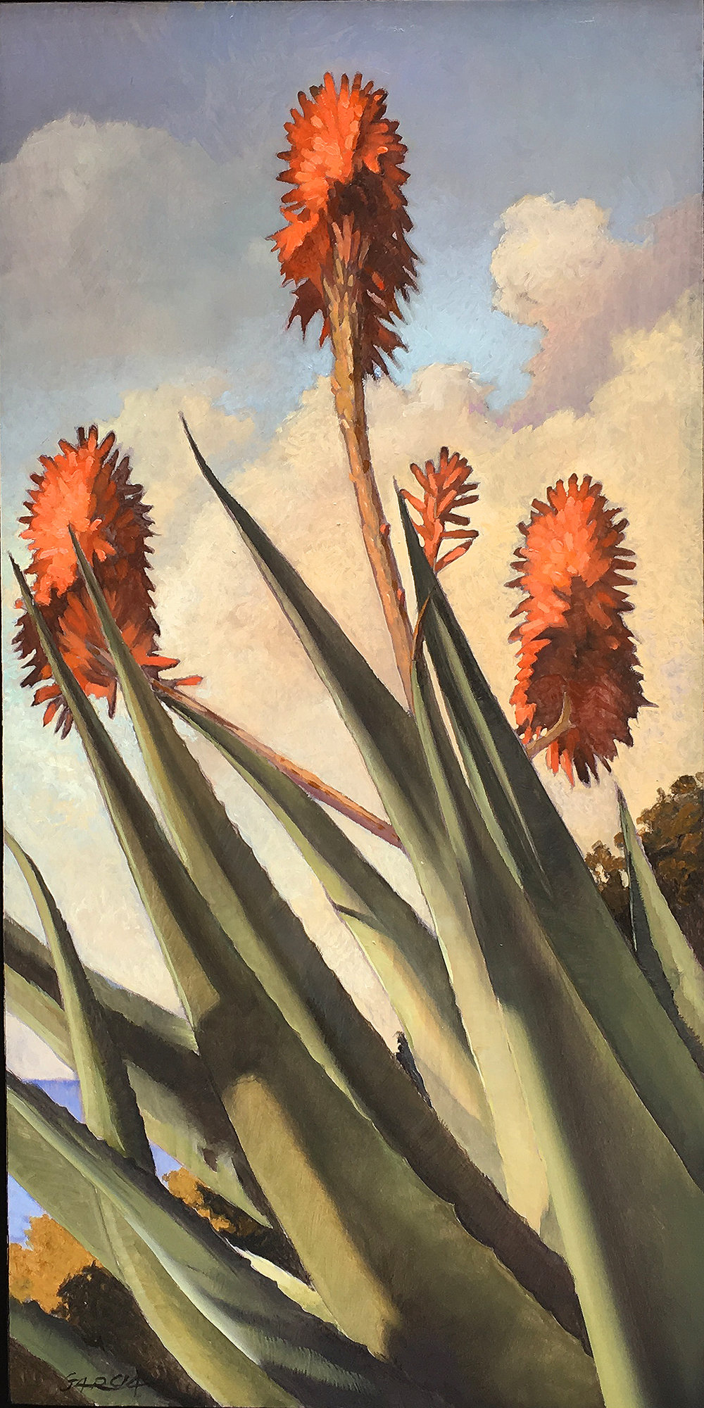 Aloe I, 16x8, oil on board. available at  Waterhouse Gallery