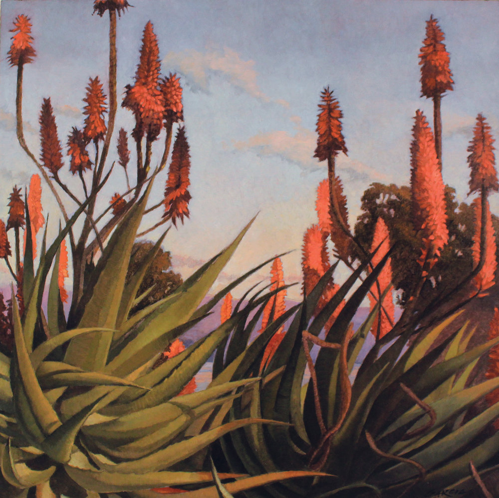 Aloe Dreamscape, 16x16, oil on board.  sold