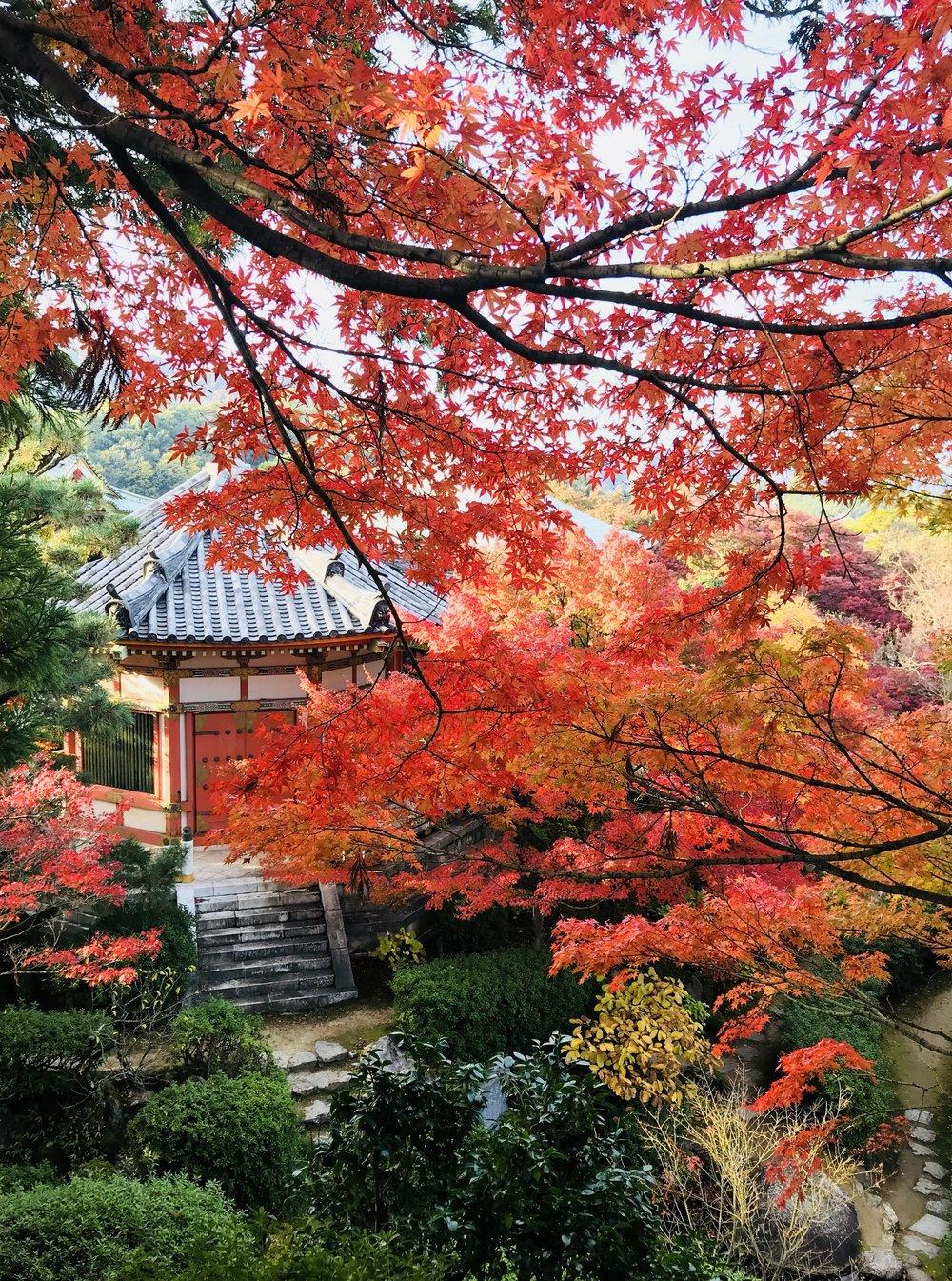 Kosanji Temple, Japan