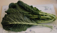 collardgreens.jpg