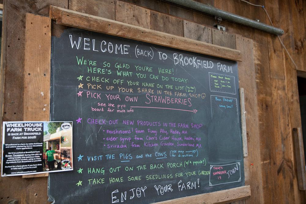 Brookfield Farm-10.jpg