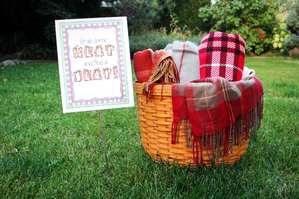 Outdoor Movie Night Blanket Basket Sign Seating Design Organize Party.jpg