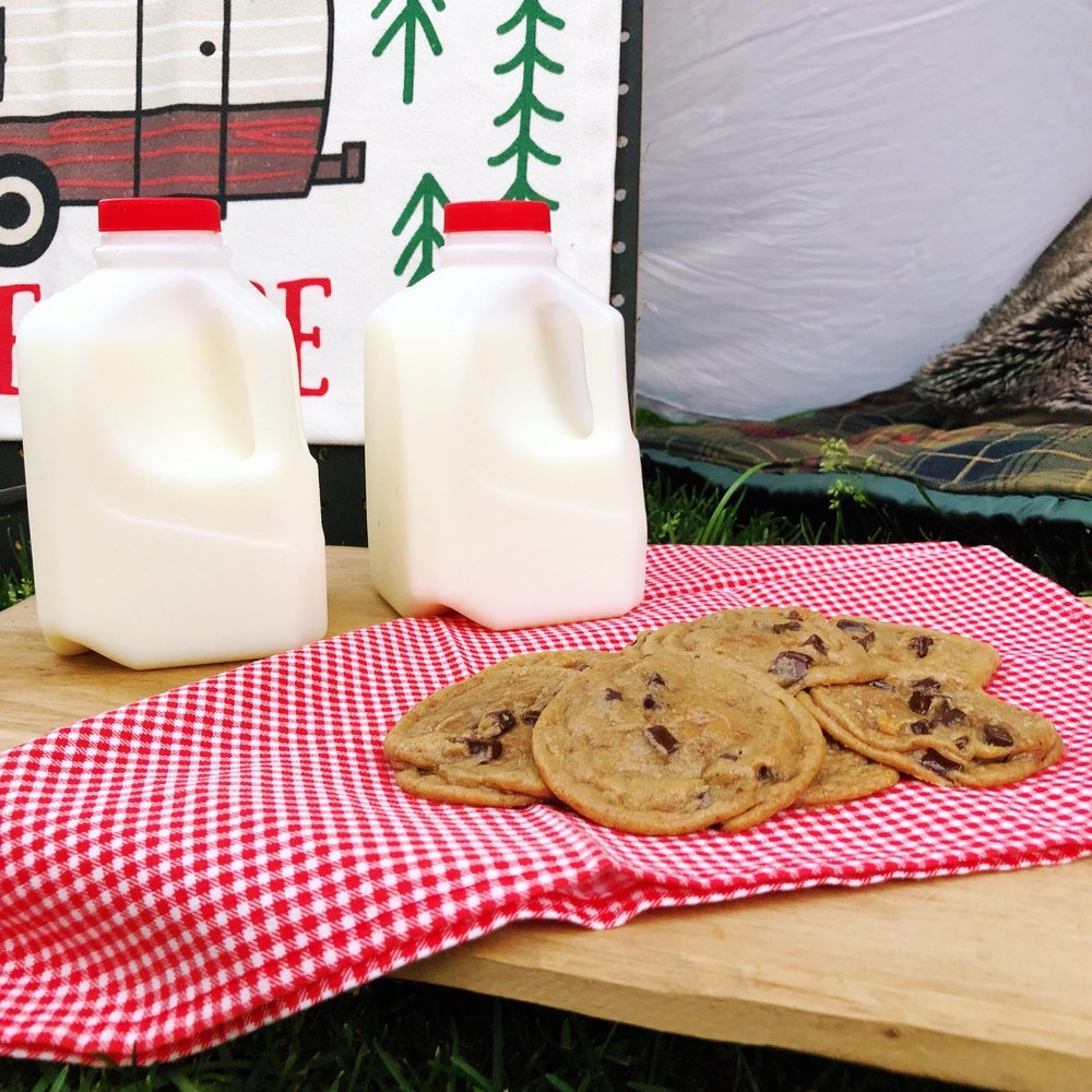 Outdoor Camping Tent Party_Cookies and Milk Jugs_DesignOrganizeParty.JPG