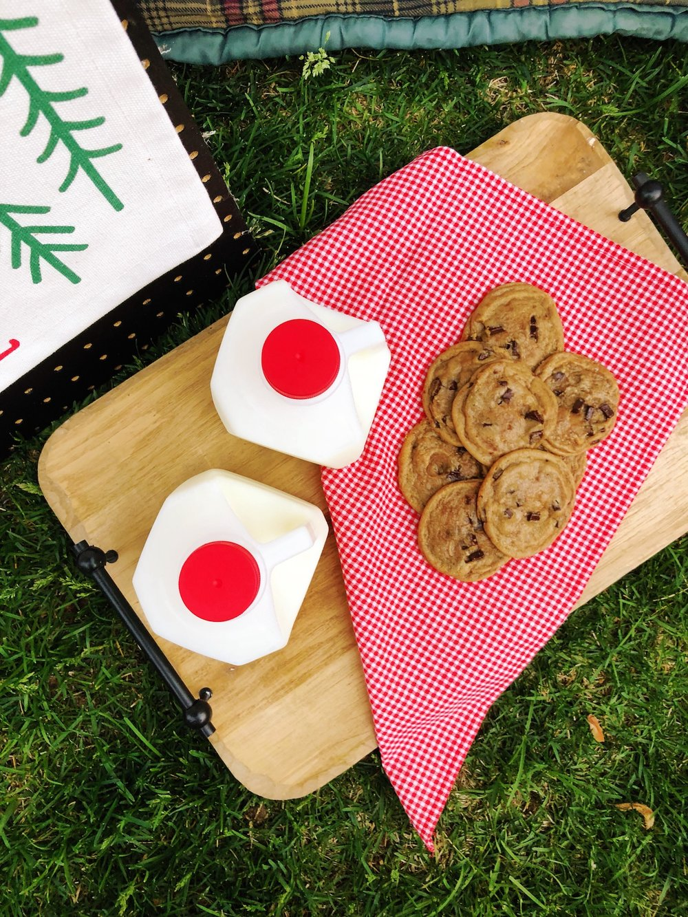 Outdoor Camping Tent Party_Milk Cookies_Picnic_Design Organize Party.JPG