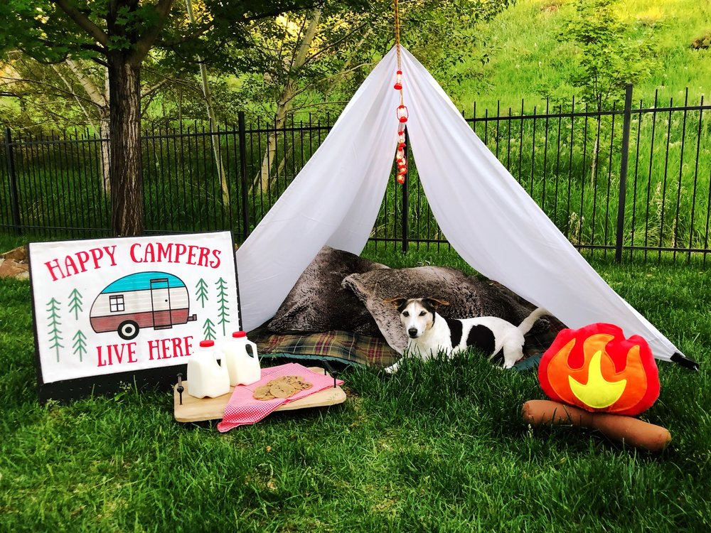 Outdoor Camping Tent Party_Target Decoration_Happy Camper_DesignOrganizeParty.JPG