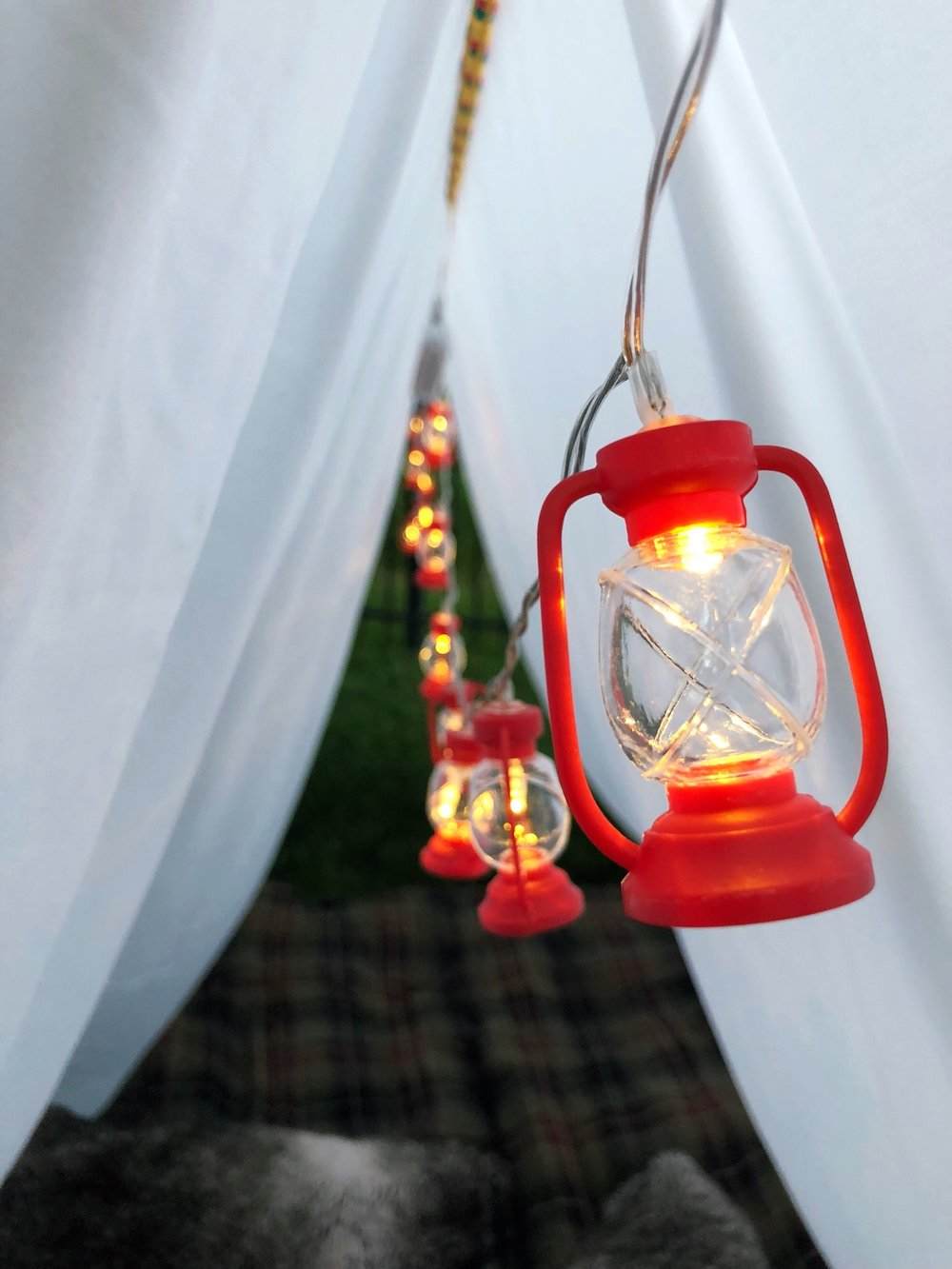 Outdoor Camping Tent Party_String Lights_Coleman Lanter_Target Dollar Spot_DesignOrganizeParty.JPG
