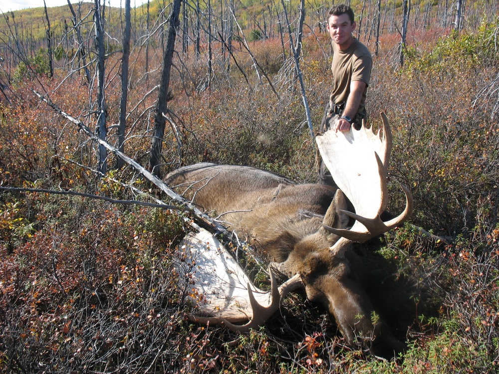 guided alaska moose hunt