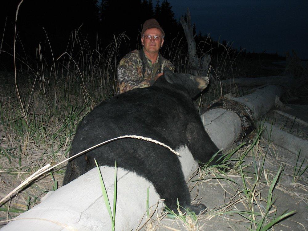 Alaska Black Bear.jpg