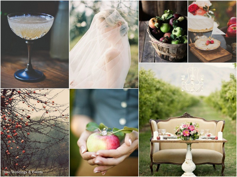 avec-weddings-and-events-apple-orchard.jpg