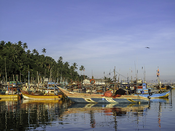 Sri Lanka Nuwara Eliya Tea Plantation 18991401964 Lg RGB.jpg