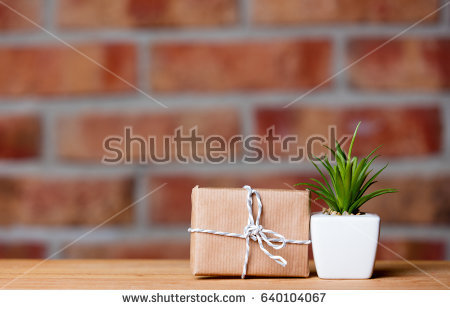 stock-photo-photo-of-beautiful-plant-in-pot-and-cute-gift-on-the-wonderful-brick-studio-wall-background-640104067.jpg