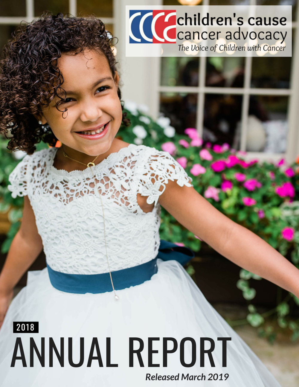 Click the cover image to view a PDF of our 2018 annual report.