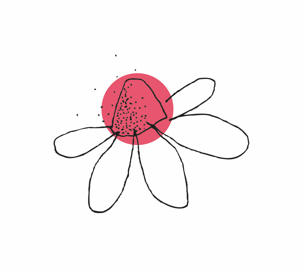 K&S_Flower.png