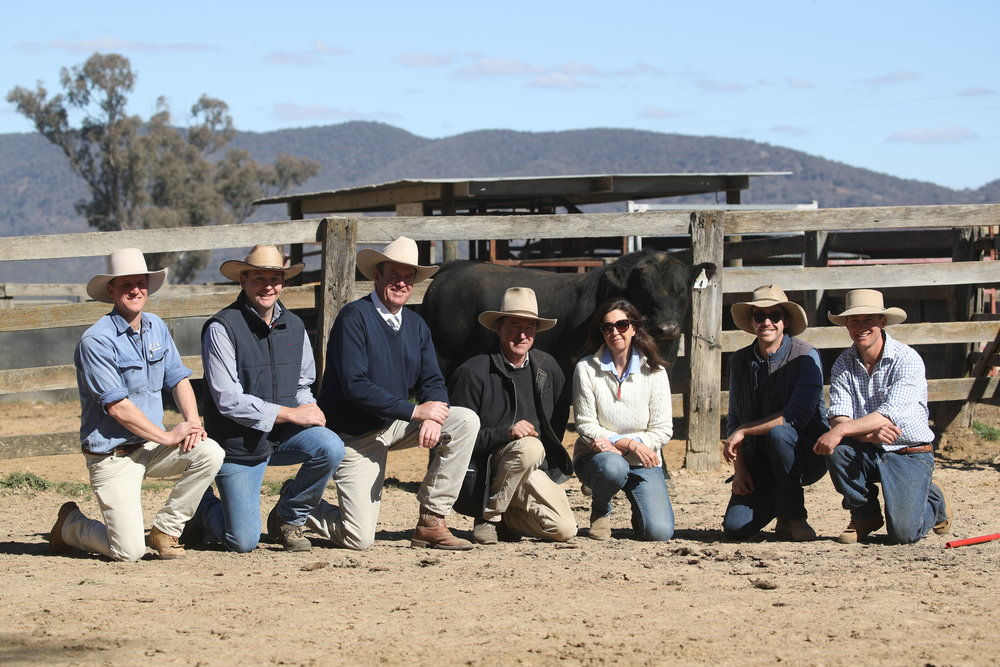 Left to right: Jack White, Andy Carter, Paul Dooley, Tom, Susan & Ted Combes, Harry White pictured with equal top priced bull Lot 4 by Millah Murrah Klooney K42.
