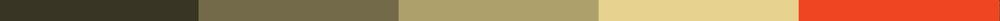 colorsF.jpg