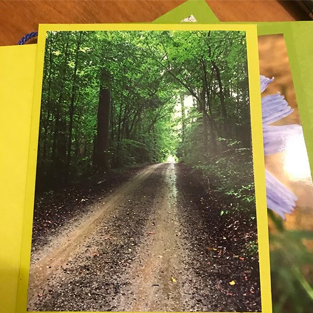 It is always a good Saturday @thissideofparis if you can imagine what Summer looks like. My photographer friend sent me a collection of her work via custom postcards!  #takethetimetowrite #thissideofparisnc