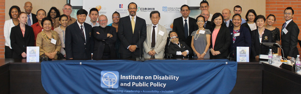 Banner_idpp_2013_annual_meeting2.jpg