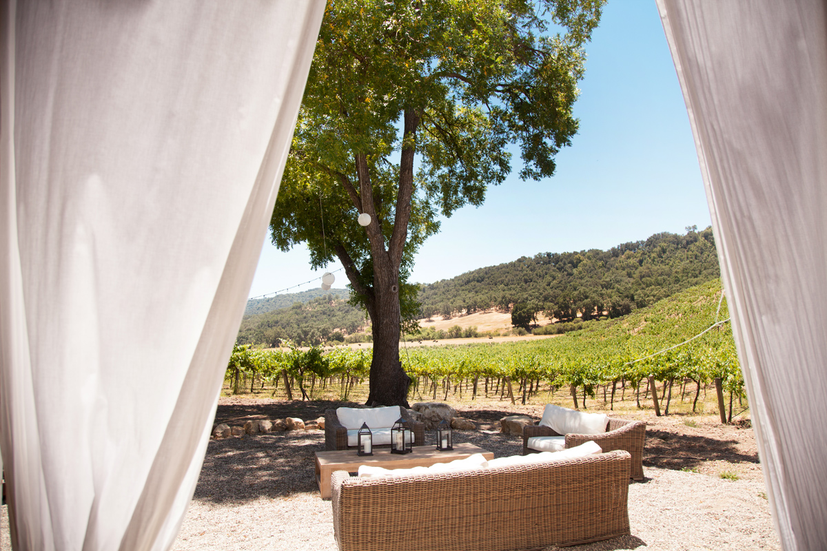 Hammersky Vineyards in Paso Robles, CA