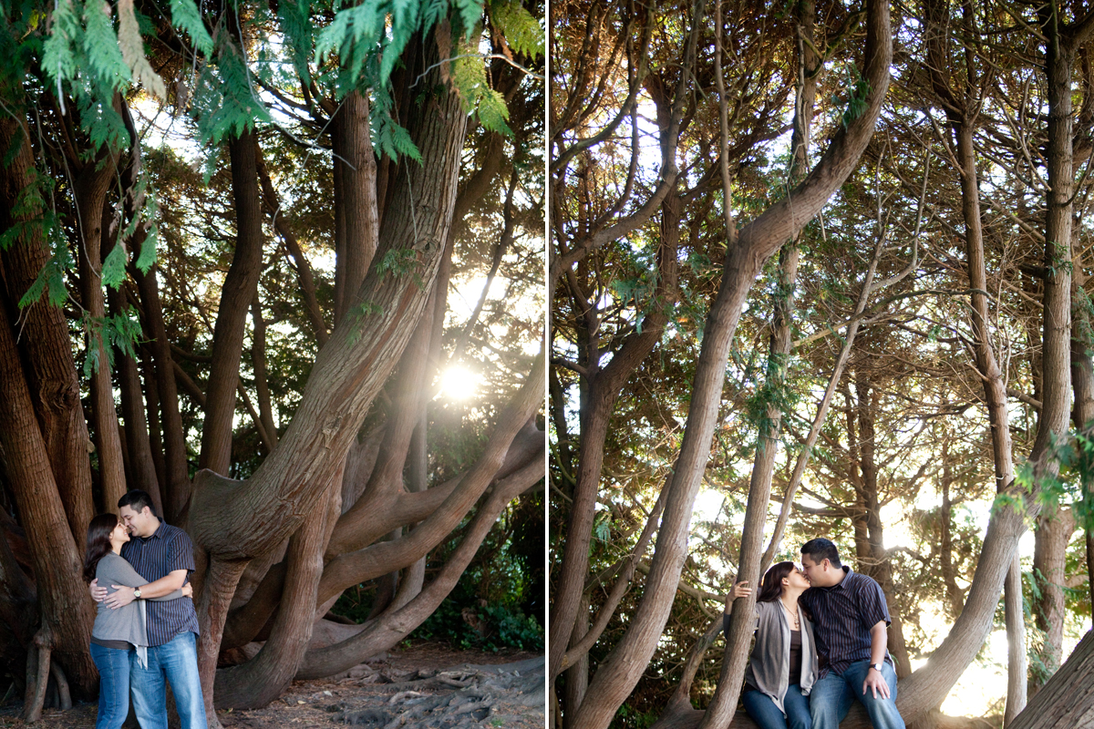 Wilder Ranch engagement in Santa Cruz, California