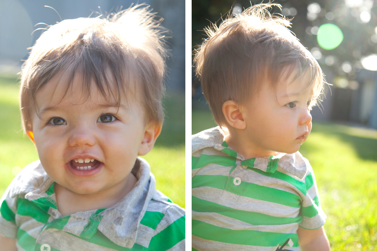 1 year old photography in Bay Area