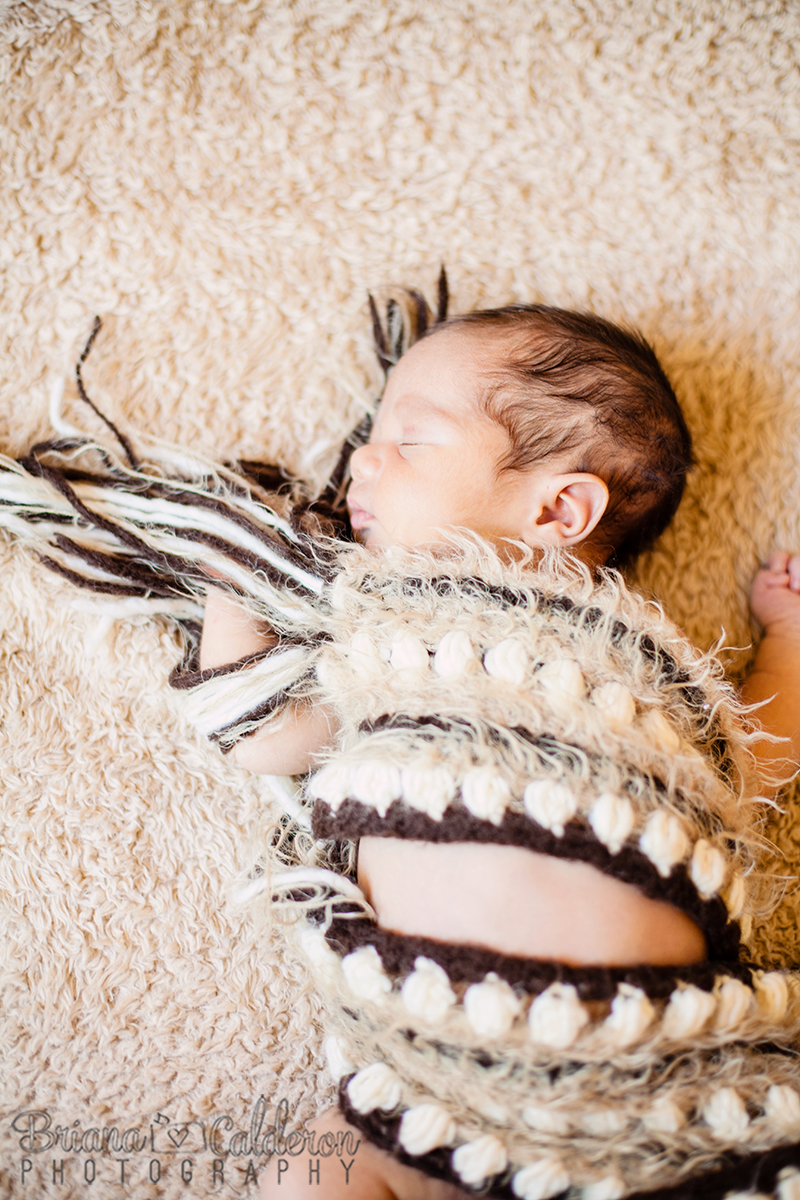 Newborn baby portraits by Briana Calderon Photography based in the San Francisco Bay Area.