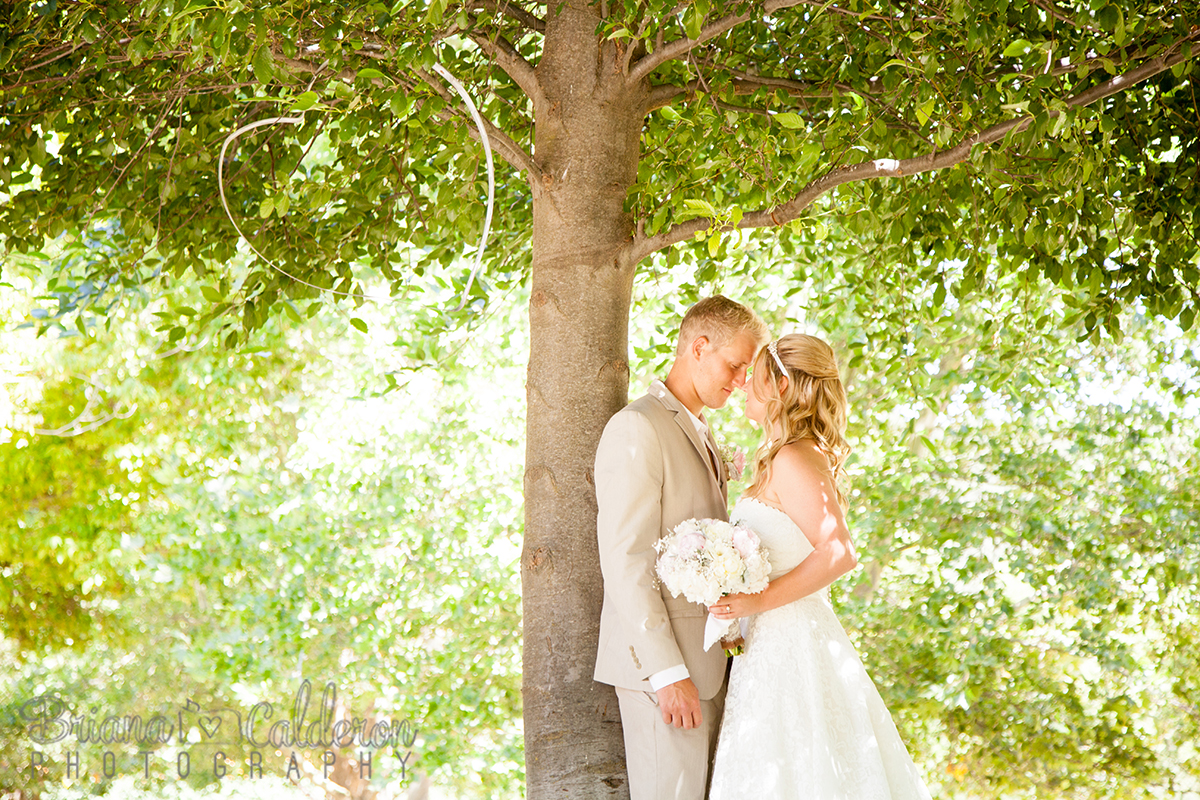 Thacher Winery wedding in Paso Robles, California.  Photo by Briana Calderon Photography based in the San Francisco Bay Area.
