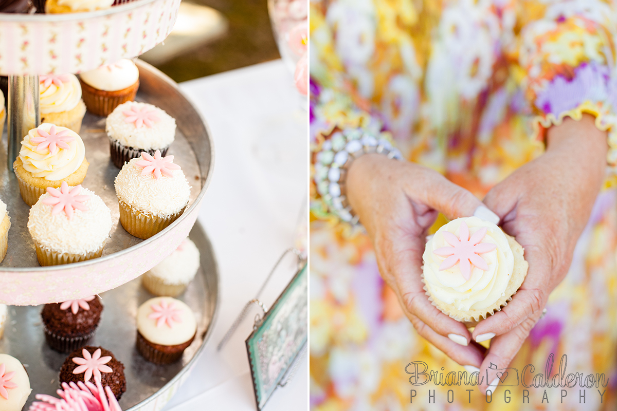 Briana Calderon Photography backyard tea party in Monte Sereno in the San Francisco Bay Area.