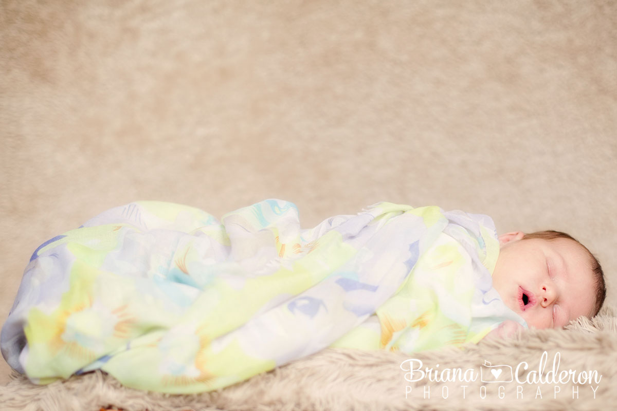Newborn photo shoot in San Jose, CA.  Photos by Briana Calderon Photography based in the San Francisco Bay Area.