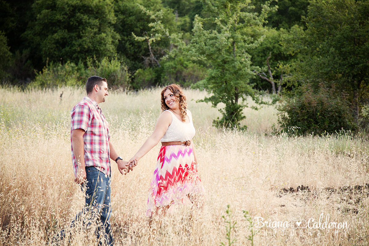 Engagement photos at Pichetti Winery in Cupertino, CA.  Photos by Briana Calderon Photography based in the San Francisco Bay Area.