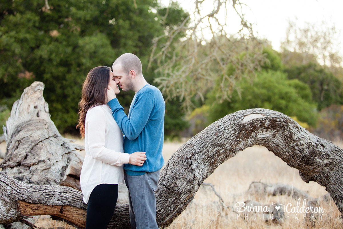 Engagement shoot at Rancho San Antonio in Cupertino, CA.  Photos by Briana Calderon Photography based in the San Francisco Bay Area.